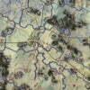 MARKET GARDEN 1944 mapa