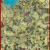 Tannenberg-map